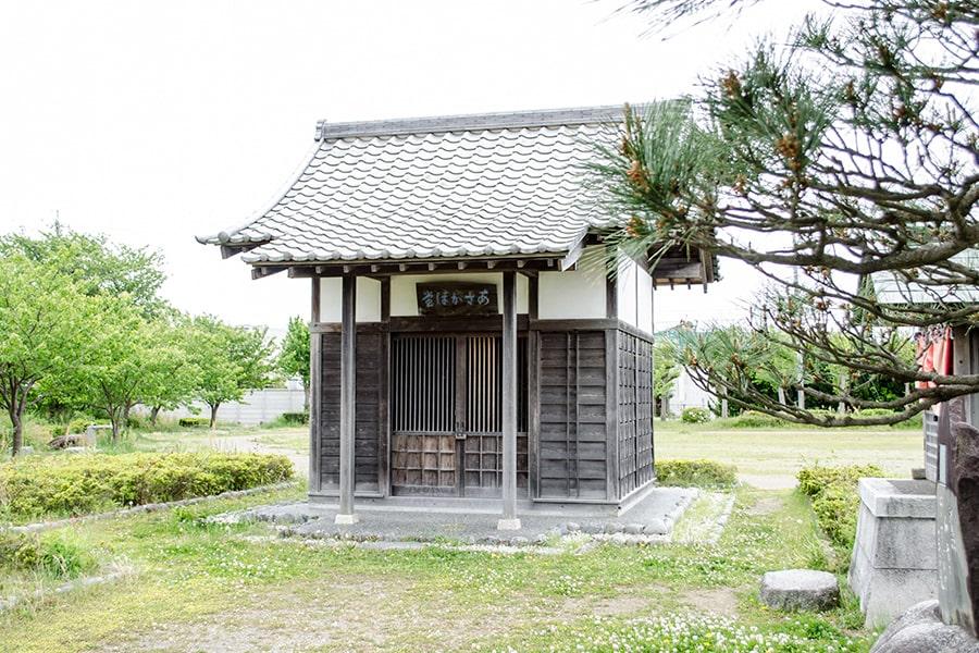 朝顔の松公園