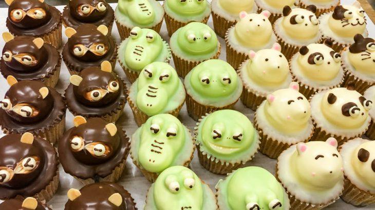 動物ケーキ